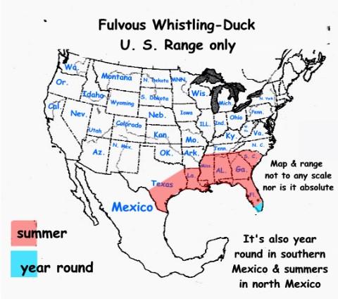 fulvous whistling duck range